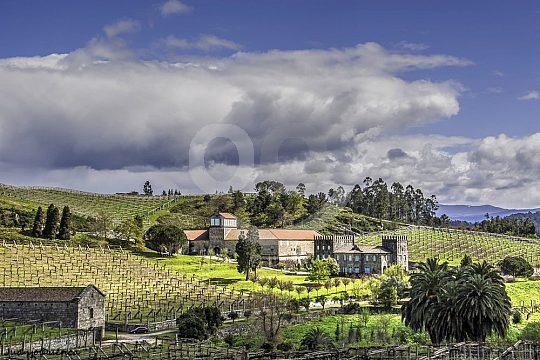 wine tours in Galicia Albariño