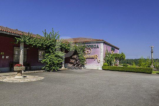 visit wine cellars in Galicia