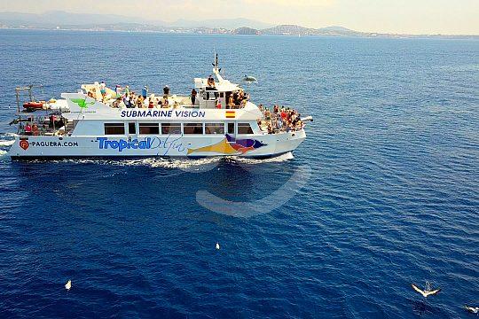 Boat dolphin watching Mallorca