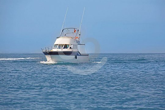 At sea with a charter boat