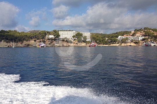 Speedboat Tour to Palma