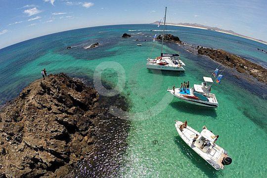 Exklusiv Katamaran buchen in Fuerteventura