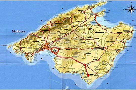 Botanicactus Majorca The Botanic Garden By Ses Salines South Of