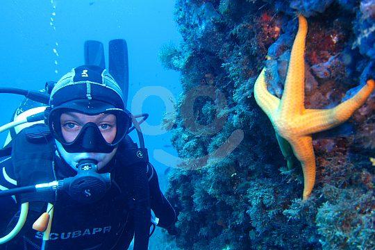 Mar Menor Discover Scuba Diving