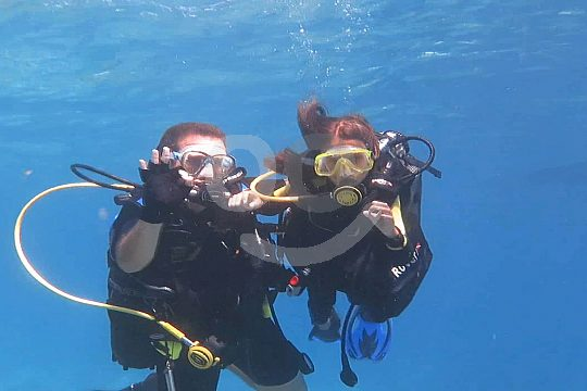 Scuba diving starting from Funchal