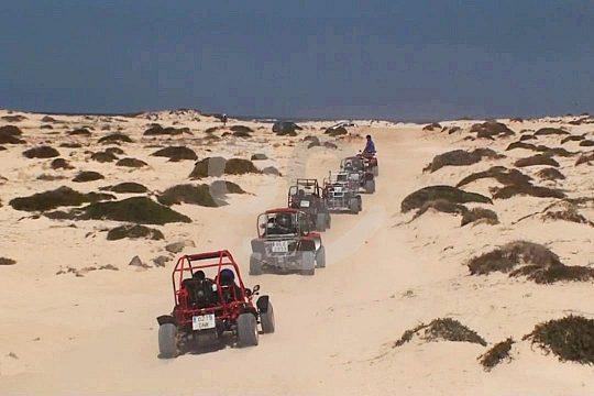 Fuerteventura desert buggy excursion