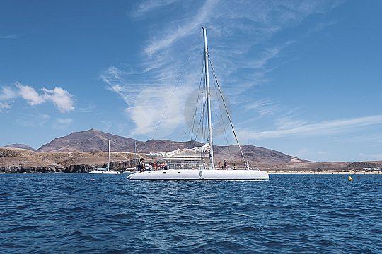 Fuerteventura mit dem Katamaran entdecken