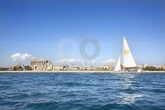 Catamaran Sailing in Palma de Mallorca