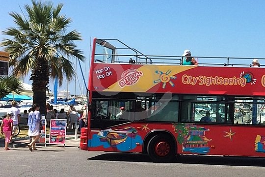 Sightseeing Bus Tour Benalmadena