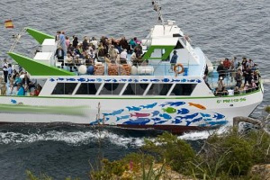 the Palmanova glass-bottom boat tour