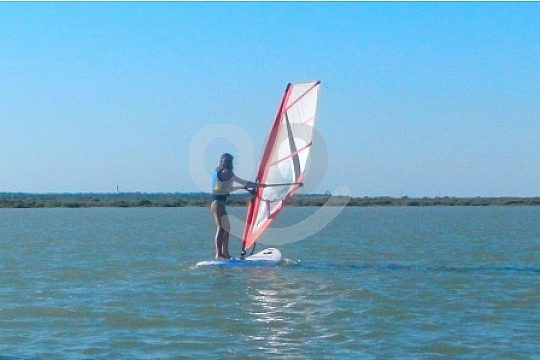 Learn the right windsurf technique