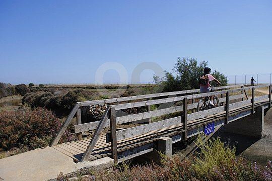 Cycling tour Algarve bridge nature park