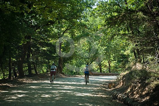 Athens day trip with cycling in North Peloponnese