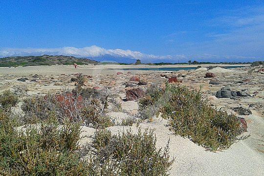 Chrissi Insel nahe Kreta entdecken