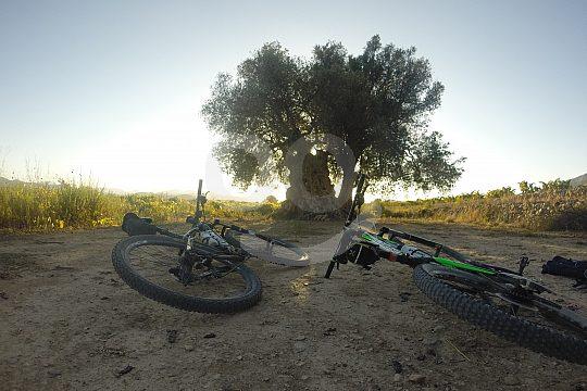 Denia mountain bike rental with guide