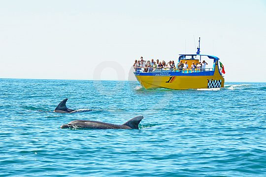 Boat Tour with dolphins in the Algarve