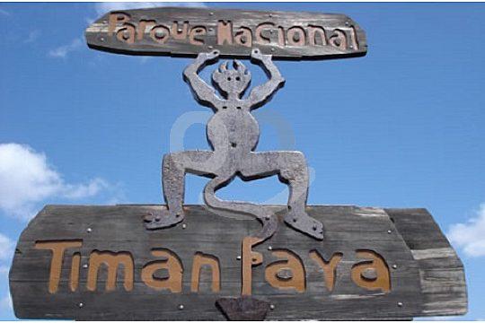 Landmark in the park Timanfaya excursion