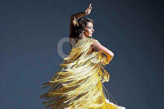 flamenco dancer in Arona