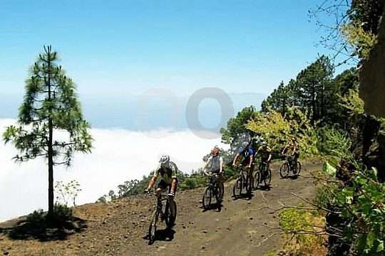 mountain trails in Tenerife hardtail