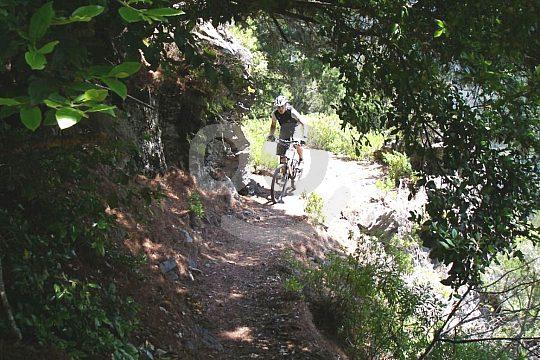 Trails in Tenerife mountain bike