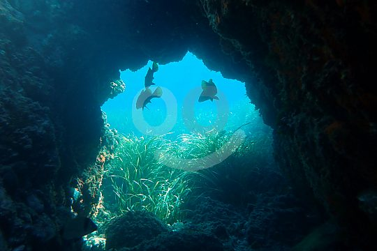 Höhlen beim Schnorcheln vor Tabaca