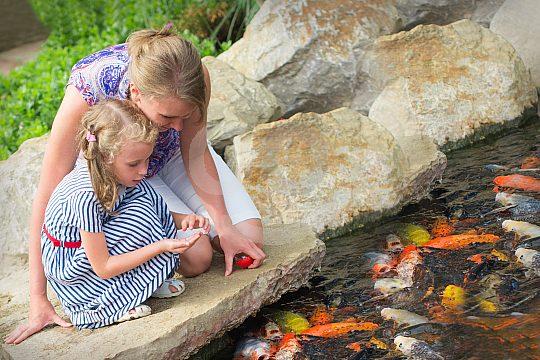 family tickets Palma Aquarium