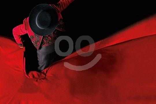 flamenco dancer at the show