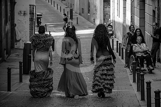 Flamenco tour through Madrid