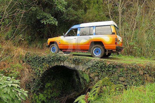 Madeira forest tour