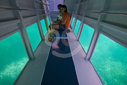 underwater windows of the glass-bottom boat