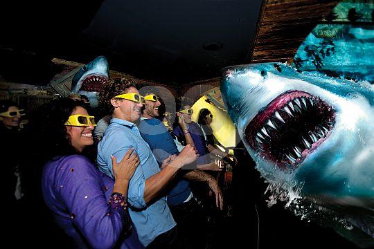 Shark Experience at Katmandu Park Mallorca