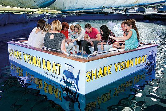 Palma Aquarium shark boat