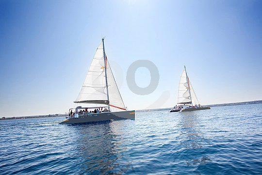 Tour with the catamaran from Palma