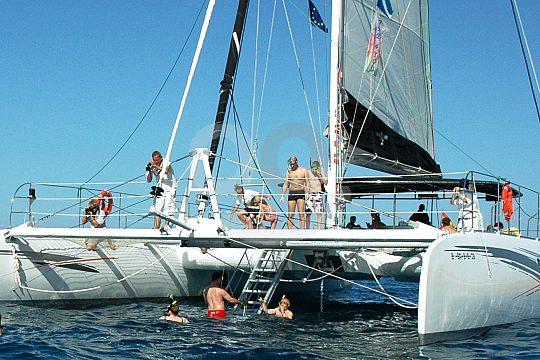Catamaran Tour Tenerife swimming
