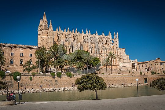 culinary walking tour through Palma cathedral