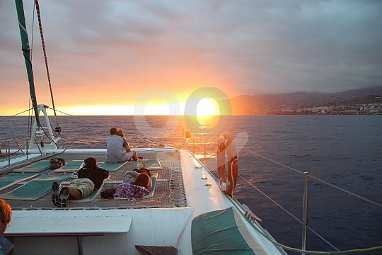 Catamaran sunset trip