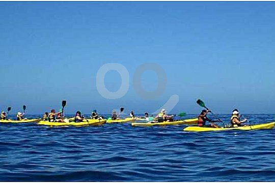 Making a Kayak tour in Gran Canaria