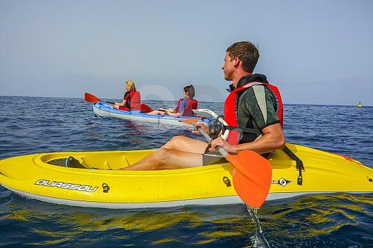 Kayak Tour zu den Schildkröten auf Teneriffa