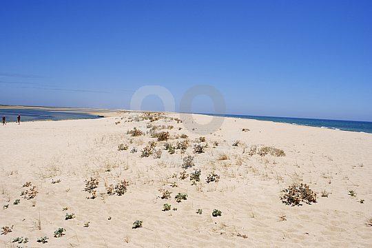 Sandy beach in the Ria Formosa