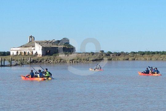 Doñana Kayak Tour on Guadalquivir