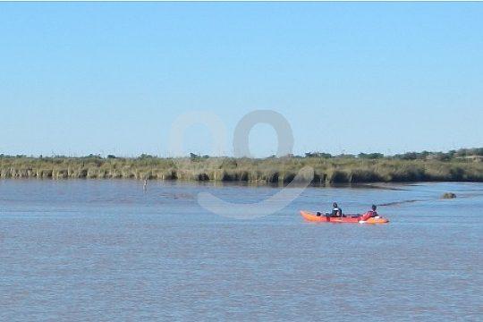 Kayaking in Doñana Natural Park