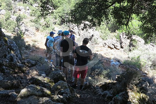 Wandertour Zypressenwald Kreta