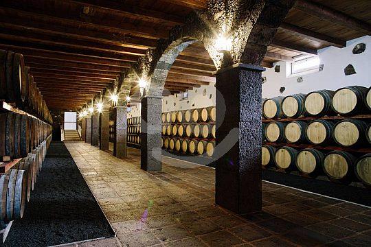 Wine cellar in the wine-growing region La Geria