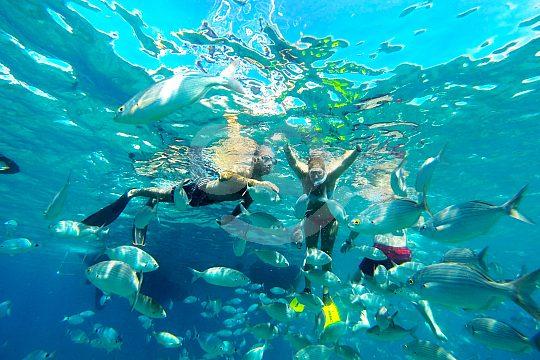 Snorkeling in front of Fuerteventura