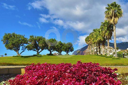 colourful Madeira