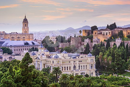 Discover Malaga in a private way with guide