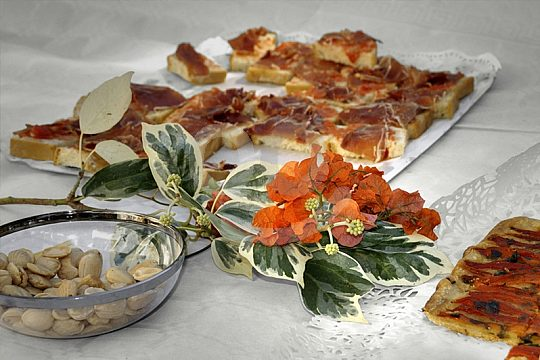 mallorca culinary tour with tapas and wine