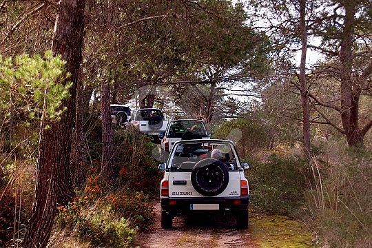 Cala Millor jeep safari in the forest