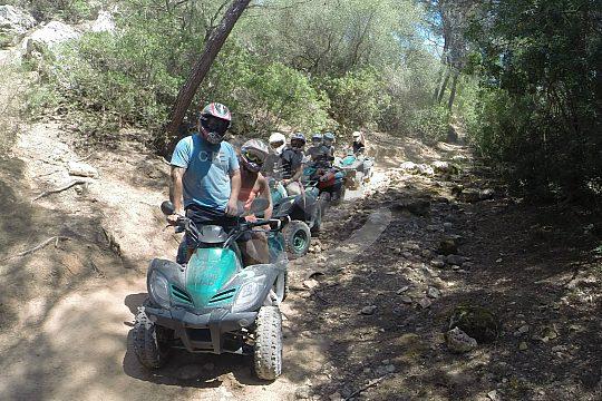 mallorca quad atv tour forest off-road