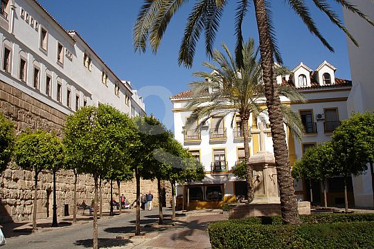 Sightseeing in Marbella with guide